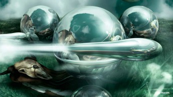3d gallery orbs hovering over the grass field with a reflection of an animal skull