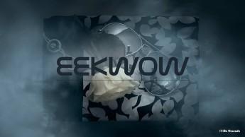 Web design gallery home page of Eekwow website